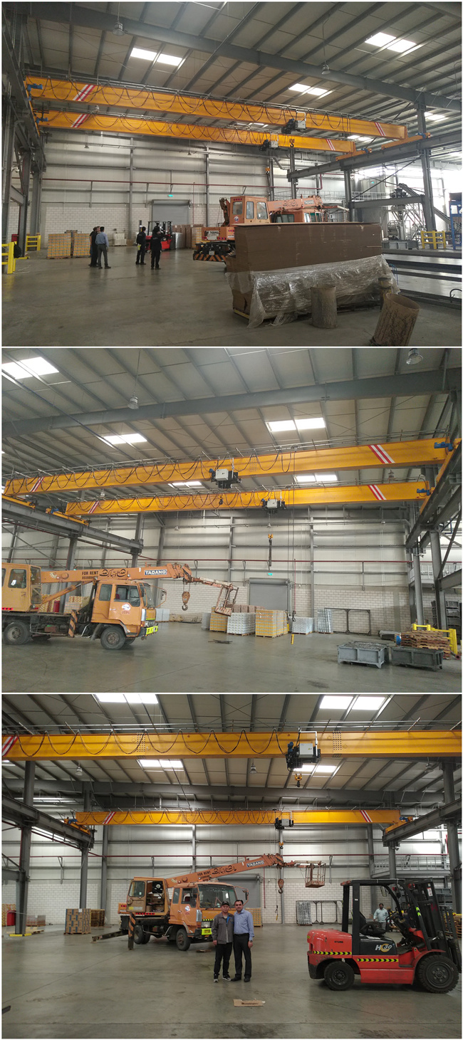5ton crane for our customer