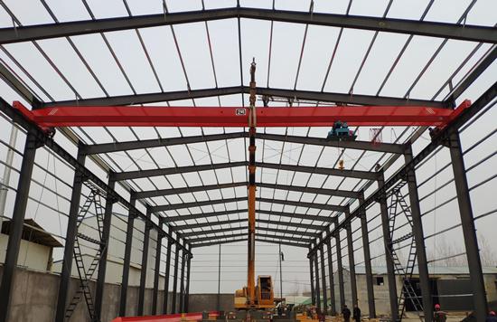 AQ-LDY2T Overhead Crane for sale